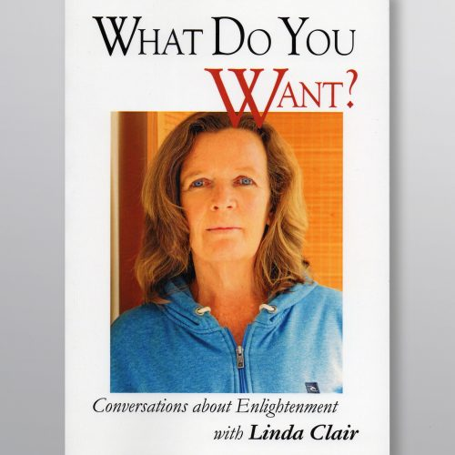 """What do You Want"", book by Linda Clair"